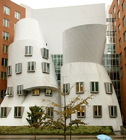 gehry statabuilding