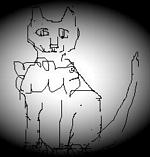 _my cat loves croppy