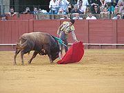 -corrida_in seville