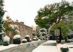 Zarzuela palace