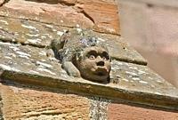 roof crawler scotland