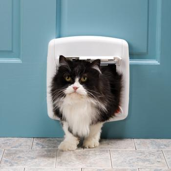 pets at home cat flap fitter