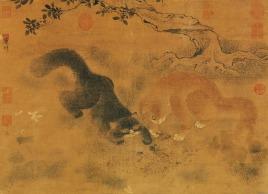 Chinese cat